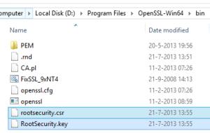 Check .csr & .key